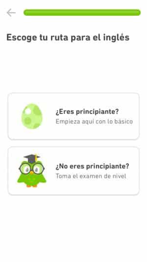 Duolingo para principiantes y para nivel más avanzado