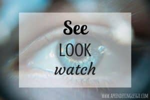SEE, LOOK y WATCH - ¿Cuál es la diferencia?