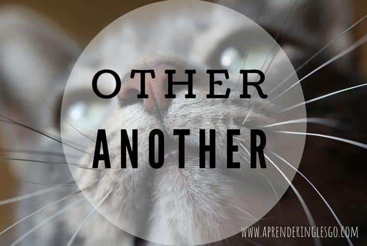 OTHER y ANOTHER - ¿Cuál es la diferencia?